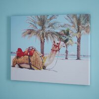 Used Camel canvas wall decor in Dubai, UAE