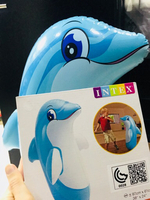 Used Dolphin  in Dubai, UAE