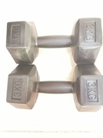 Used Dumbbell 3kg 2X in Dubai, UAE