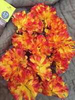 Used Gorgeous stemless flowers 48pieces  in Dubai, UAE