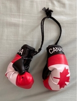 Used Hanging Canada Boxing Gloves  in Dubai, UAE