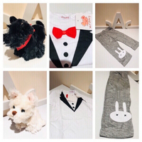 Used Romper & pants & 2 plush dogs  in Dubai, UAE