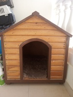 Used Dog House in Dubai, UAE