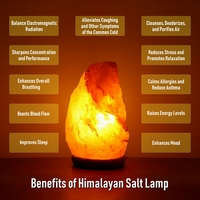 Used Himalayan Salt Lamps in Dubai, UAE