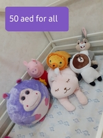 Used 50 aed for all in Dubai, UAE