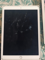 Used iPad pro 10.5 inch 256g 2017 not working in Dubai, UAE