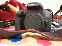 Used Canon 850D / Rebel T8i Body only in Dubai, UAE