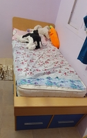 Used Single bed with drawers in Dubai, UAE