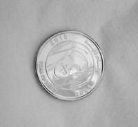 Used Year of zayed coin in Dubai, UAE