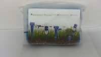 Used Automatic plant watering devices 12pcs in Dubai, UAE