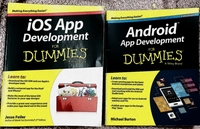 """Used 2 Books from """"WORK FOR DUMMIES """" in Dubai, UAE"""