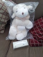 Used Teddy Bear & Bird Pen Decoration Food in Dubai, UAE