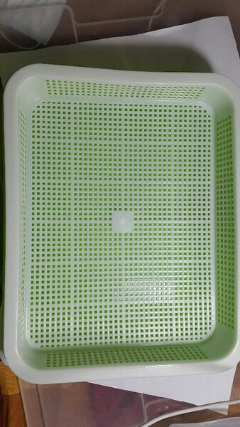 Used Hydroponics seeding tray in Dubai, UAE