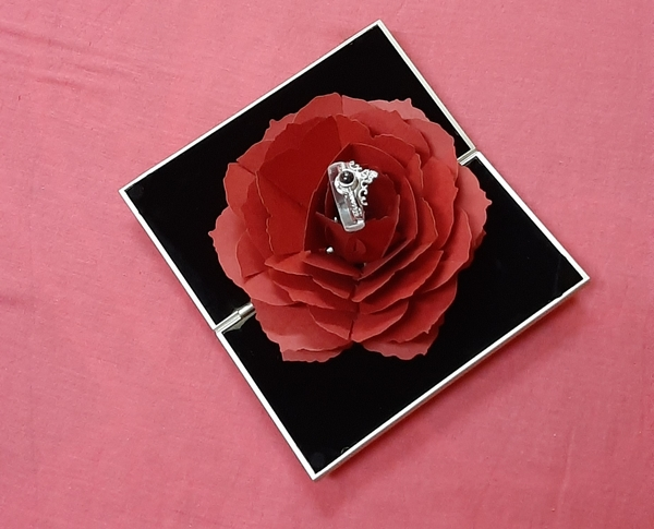 Used 2 in 1 crown projection love ring ! in Dubai, UAE