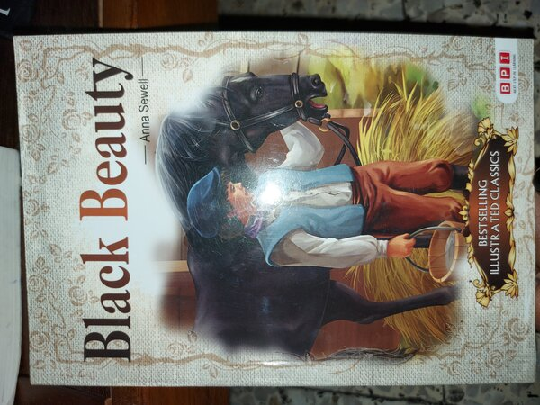 Used Black beauty book in Dubai, UAE