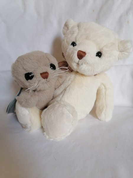 Used Bears in Dubai, UAE