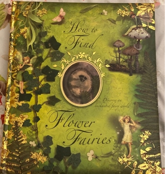 Used How to Find Flower Fairies pop up book in Dubai, UAE