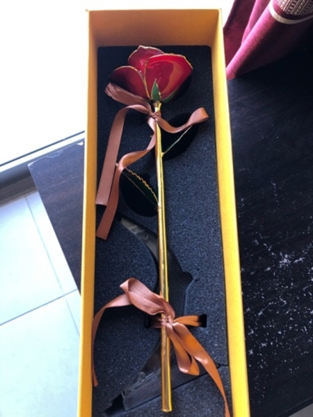 Used Red Rose dipped with gold in Dubai, UAE