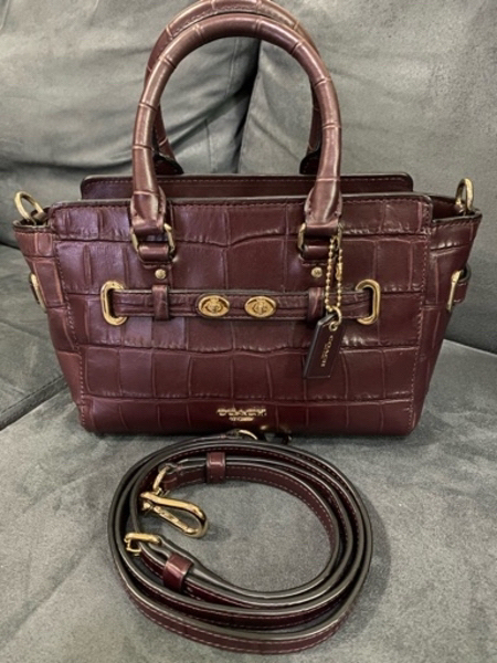 Used Coach Mini blake and 2 pandora charms in Dubai, UAE