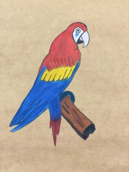 Used A painting about the parrot Casco in Dubai, UAE