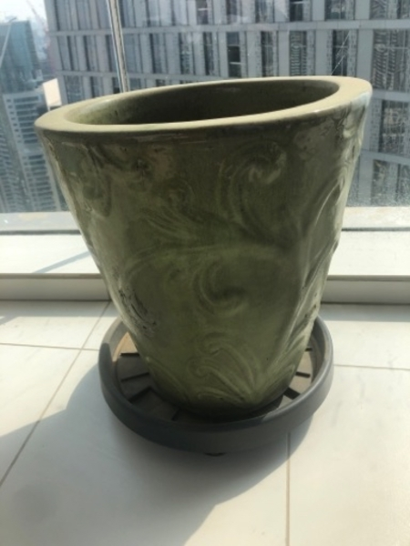 Used Plant pot in Dubai, UAE