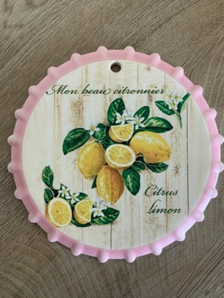 Used Wall decoration Lemon in Dubai, UAE