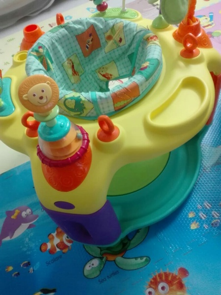 Used Exersaucer /bouncer in Dubai, UAE