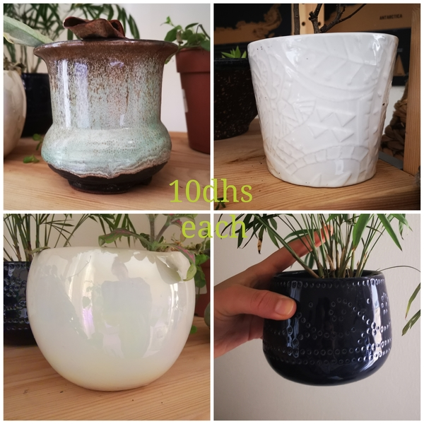 Used Plant pots in Dubai, UAE