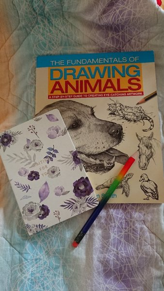 Used Drawing book in Dubai, UAE