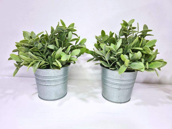 Used Artificial Plants with Pots (two pieces) in Dubai, UAE