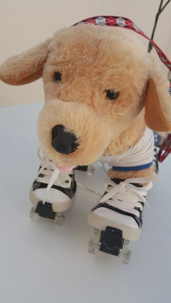 Used Nice Dog on Roller Shoes from Buildabear in Dubai, UAE