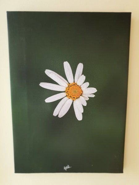 Used canvas flower photo      29cmx42cm in Dubai, UAE